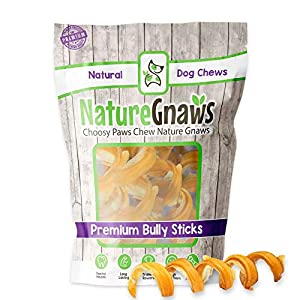Nature Gnaws Bully Stick Springs for Dogs – Premium Natural Beef Bones – Long Lasting Spiral Dog Chew Treats – Rawhide Free – 7-10 Inch