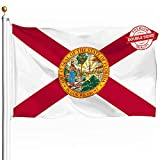DFLIVE Double Sided Florida State Flag 3x5ft Heavy Duty Polyester 3 Ply FL Sunshine State Flags Indoor and Outdoor Use