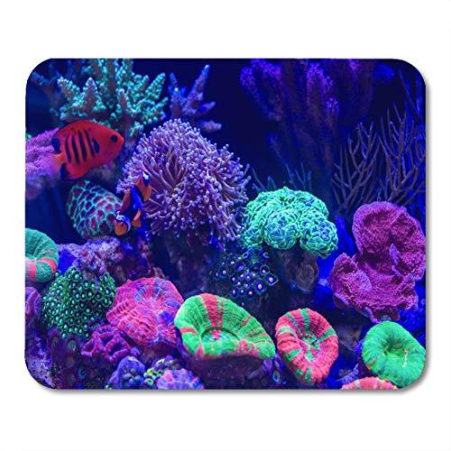 Mauspad, blauer Tierclownfisch als bekannter Anemonenfisch Lange Polypen Steinkoralle, um solche Fackel zu sein Braun Aquarium Komfort Mausmattenpad für Desktop-Frauen Mann,18x22cm