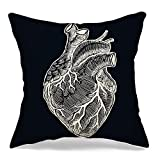 Throw Pillow Covers Case for Couch Sofa Cozy Anatomy Realistic Human Heart Vintage Hand People Real Biology White Love Black Sketch Anatomical Pillowcase Home Decoration Soft Linen 20 x 20 Inch