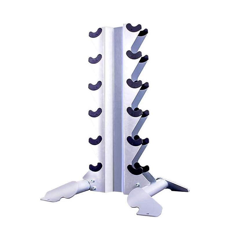 混乱したシャッフルキャラクターYSYYSH 調節可能なプロフェッショナルダンベルは商業ジムのエクササイズ機器シリーズベンチスタンド フィットネスチェア (Color : Silver, Size : 76*65*107cm)
