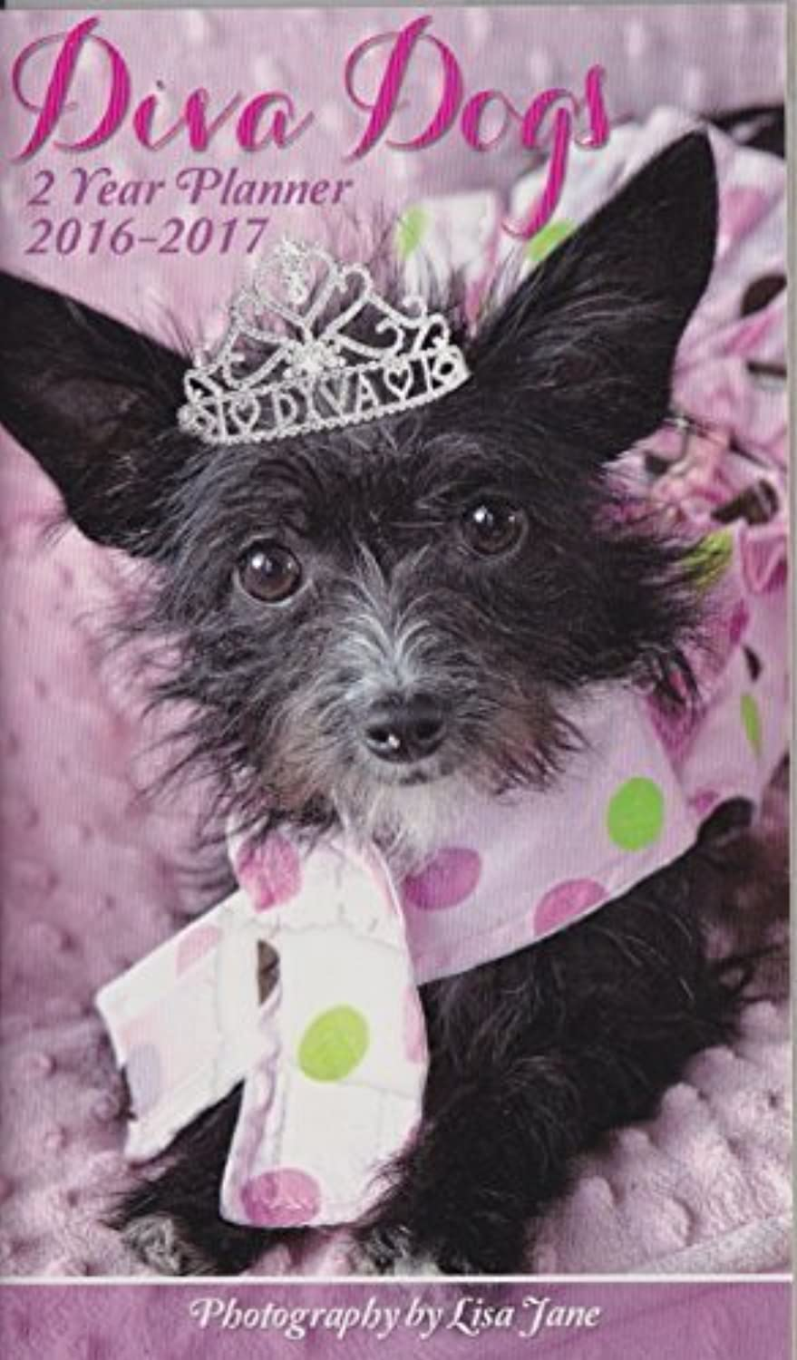 2016-2017 Two Year Monthly Pocket Planner Planner Planner - Diva Dogs by Studio 10 B018RFBO0O | Qualität Produkte  582e5f