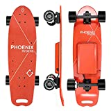 Alouette Electric Skateboard