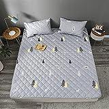 FAYANG Ratán Imitado/Doble Cara/Colchón Futón Verano, Topper Dormir, Individual/Doble/Estudiantes Dormitorio/90x190/...