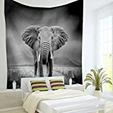 Brandless Roaring Lion Tapestry Animal Salvaje Colgante de Pared para Dormitorio Sala de Estar Dormitorio Arte de Pared Yoga Picnic Mat (200x150cm)