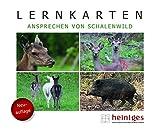 Lernkarten Ansprechen von Schalenwild - Wolfgang Heintges