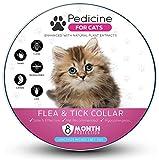 Best Flea Collars For Kittens - Pedicine Cat Flea Collar for Flea and Tick Review