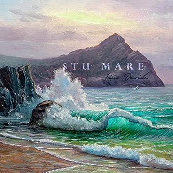 Stu Mare