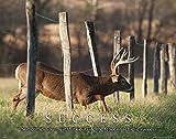 Whitetail Deer Motivational Poster Art Print...