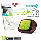 Pet GPS Tracker for Dogs and Cats by Kippy | GPS Monitoring & Activity...