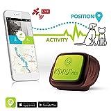 Il GPS per cani e gatti di Kippy |GPS Tracker e Activity monitor per cani, gatti e non solo | Funziona con Iphone, Android, Smarphones, Tablets | Servizio di tracciamento tramite rete dati richiesto e venduto separatamente