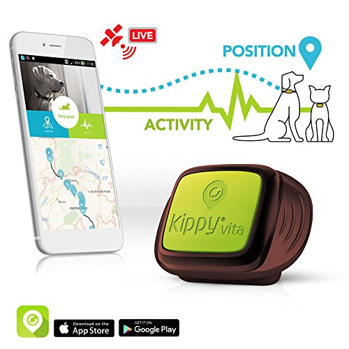 Kippy Traceur GPS