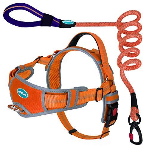 ThinkPet No Pull Breathable Harness Leash Set - Reflective Padded Dog Vest with Handle, Reflective Neon Dog Leash M Orange