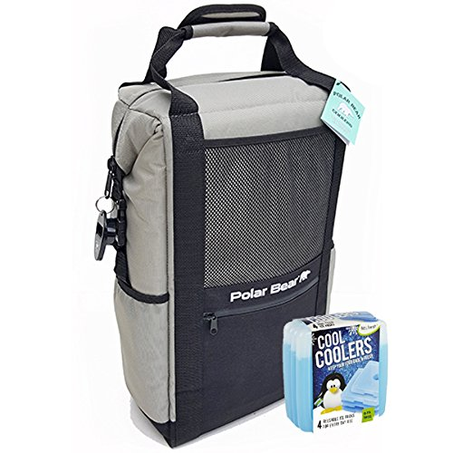 Polar Bear Coolers Nylon Solar Bear Series Backpack Size 18 Pack Silver & Fit & Fresh Cool Coolers Slim Ice 4-Pack (Bundle)