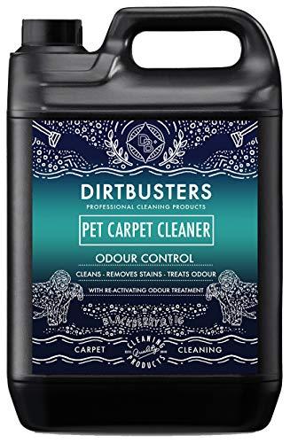 Dirtbusters Haustier Teppichreiniger – neutralisiert Tiergerüche & entfernt Flecken in Teppichen & Polstern - mit Brombeer- und Feigenduft - für Teppichreinigungsmaschinen geeignet - 5 l Kanister