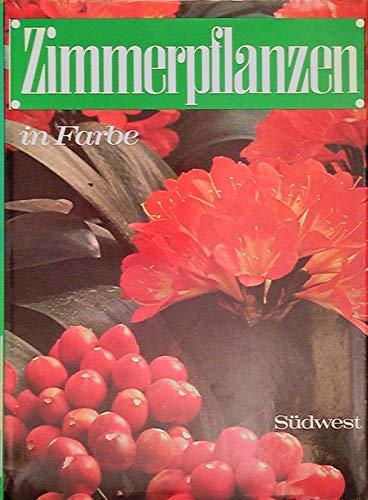 Zimmerpflanzen in Farbe