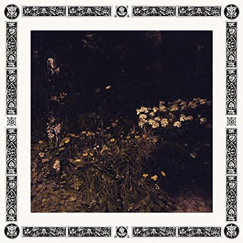 Pale Bloom (Vinyl)