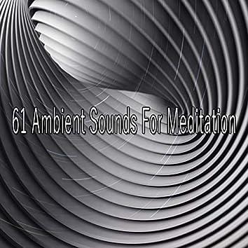 61 Ambient Sounds for Meditation