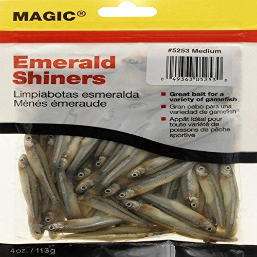 MAGIC Preserved Minnows Fishing Bait, Medium/4-Ounce
