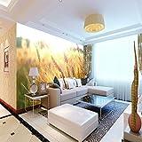 Vlies Fototapete Weizenfeld B250cm x H175cm Moderne Wanddeko - Design Tapete - Wandtapete - Wand Dekoration-Wandtapete Design Tapete Geeignet für Wohnzimmerwand Schlafzimmer Kinderzimmer