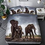 Ropa de Cama Conjunto 3D Imprimir Paisaje Natural Manada de elefantes100% Tejido de poliéster Funda nórdica and Funda de Almohada Diseñado para tu habitación 220 x 240 cm