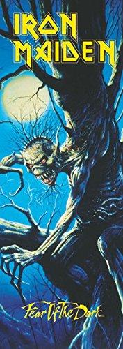 Iron Maiden puerta bandera bandera Poster fear OF THE Dark 145 x 51 cm