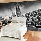 Grand papier peint fait sur commande avec la décoration architecturale de mur de fond de photographie architecturale de panorama noir et blanc, 400 × 280Cm