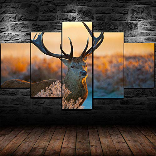 KOPASD 5 Piezas Ciervos Animales Salvajes Sabana De Arte De Pared Impresión En Lienzo Animal Arte Moderno para Decoración del Hogar