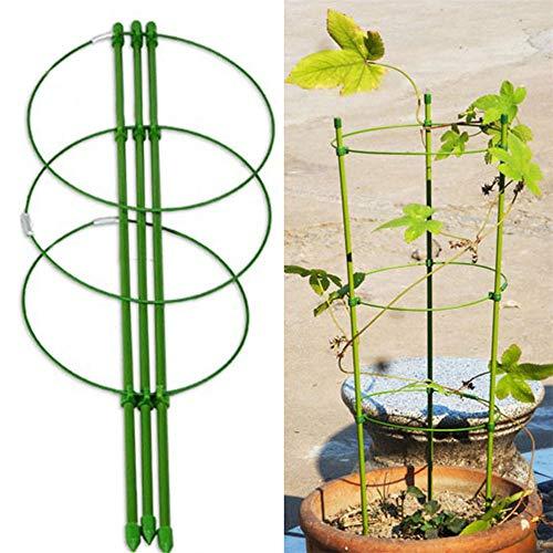 Wankd 1 Stück Pflanzenstütze, Rankhilfe zimmerpflanzen, Höhenverstellbare Ringe, Pflanzstäbe, pflanzenhalter, Balkon, Beet, Pflanzen stütze, Rank-Gitter für Topfpflanzen, Grün (45CM)