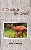 A Cabin in the Woods: A Children's Nature Book (English Edition)
