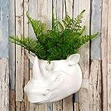 Walplus 2in 1decorazione da giardino vaso per piante da appendere alla parete Faux Tax...