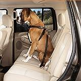 JINCHAO Auto Hunde Sicherheitsgurte Hundegurt Sicherheitsgeschirr Hunde Auto Adapter Sicherheitsgurt Einstellbare 19-31 Zoll Schwarz - 2