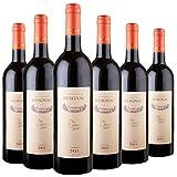 GRAND VIN DE REIGNAC - CHATEAU DE REIGNAC - millésime 2013 - LOT de 6 bouteilles de 75cl - vin rouge - AOC Bordeaux Supérieur