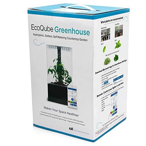 EcoQube Gewächshaus – selbstbewässernd Hydrokultur-Gartendekoration, mit intelligenten LED-Lichtern