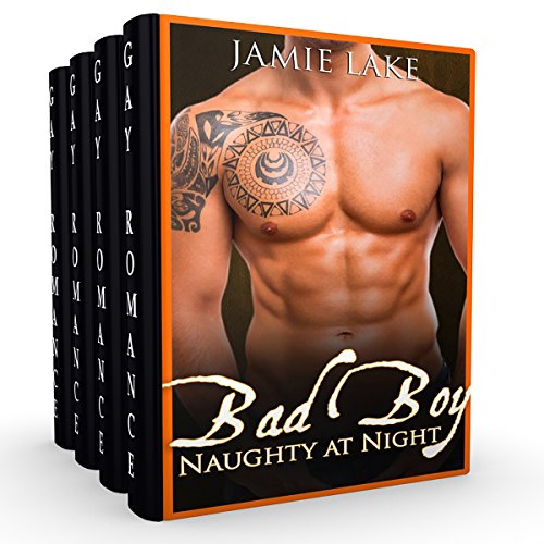 Bad Boy: Naughty at Night audiobook cover art