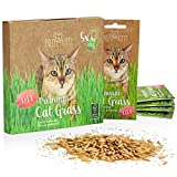 Premium Cat Grass Seeds for Planting: 5x25g Plant Seeds for 50 pots natural Cat Treat – Fibre Supplement for Cats – Cat Grass Seed Fast Growing – Grass for Cats, Cat Plant – Cats Grass by PrettyKitty