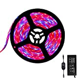 Tesfish 12V LED Plant Grow Light Strips 16.4ft with Power Adapter and Dimmer Indoor Growing Lights Waterproof Full Spectrum SMD 5050 Red Blue 4:1 for Indoor Plants Greenhouse Aquarium Hydroponic Plant