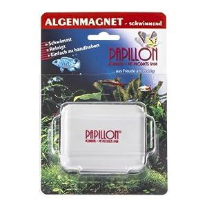 Papillon-Algenmagnet-schwimmend