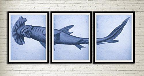 Hammerhead Vintage Print Set Shark Poster Ocean Art Prints Wall Decor Marine Biology Artworks Wall Art Dining Room Art Wall Hanging