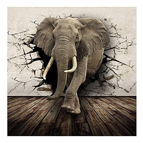 Kit de pintura de diamante elefante Tierra Animal redondo completo Rhinestone Art Picture