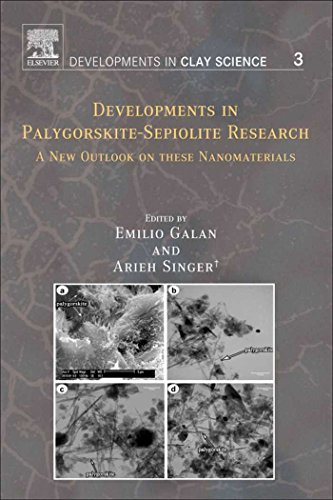 Developments in Palygorskite-Sepiolite Research: A New Outlook on these Nanomaterials (ISSN Book 3) (English Edition)