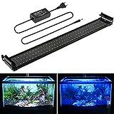 MAINLICHT 70-90 cm éclairage Aquarium Leds 90 Blanc + 18 Bleu lampe 18W 2 Mode Lumières Rampe Led pour Aquarium