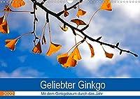 Geliebter Ginkgo (Wandkalender 2022 DIN A3 quer): Zwoelf Aufnahmen vom Ginkgobaum (Monatskalender, 14 Seiten )
