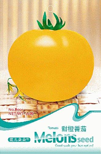 Graines de tomate jaune Big Organic, Emballage organique, 20 graines / Pack, Edible sain Légumes B021