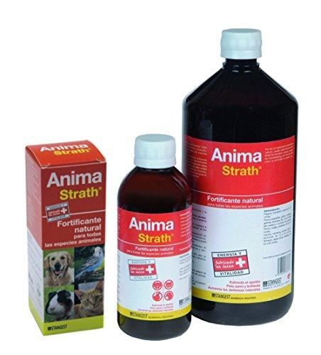 Strangest Anima-Strath Suplemento Nutricional para Animales de compañía   Fortificante Natural con Levadura de cerveza, Malta, Miel y Zumo de Naranja   Mejora energía y Vitalidad   Apoya Sistema Inmune   250 ml