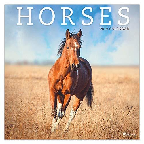 Horses - 2019 Wall Calendar - 12x12 Michigan