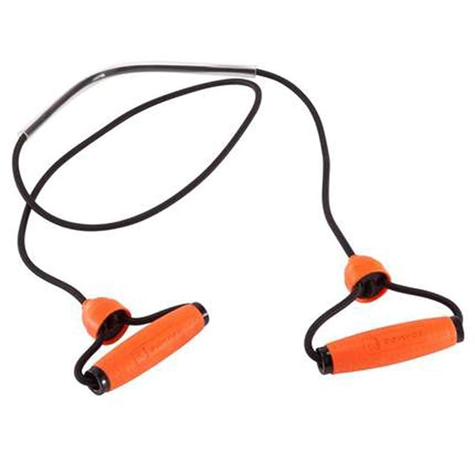 噛む確認いたずらな多機能ワードプルロープホームラリーフィットネス弾性ロープラテックスチューブアームの力の胸 (色 : Orange)
