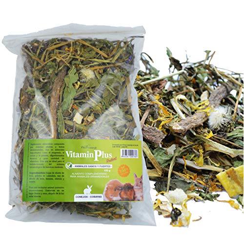 FINCA CASAREJO VitaminPlus Rodent - 100g - Snack de Hierbas y Frutas para Conejos, cobayas, Chinchillas y Otros pequeños Animales (1 Unidad)