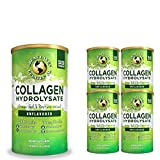 Great Lakes Gelatin, Collagen Hydrolysate, Unflavored Beef, Kosher, 16 Oz 4-Pack