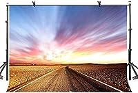 HD 10x7ft高速道路の背景遠方高速道路の写真の背景写真スタジオの背景小道具LYXC137